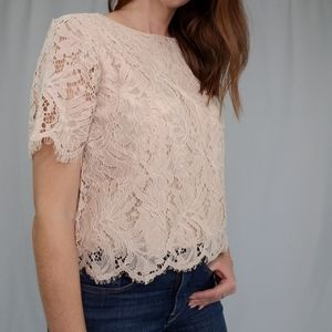 Loving lace short sleeve top